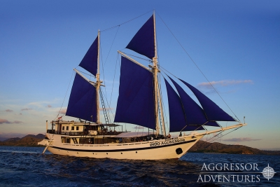Dancer and Aggressor The Liveaboard Fleet