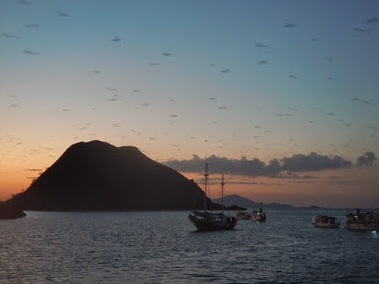 Flying Foxes crossing the Archipelago at sunset - a highlight of any trip to Komodo