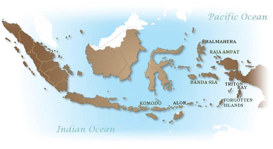 Samambaia_Liveaboard_Diving_Destinations_Indonesia