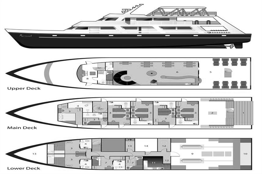 Mermaid I Liveaboard Layout