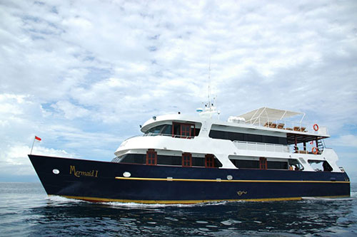 Memaid I Liveaboard diving trips in Indonesia