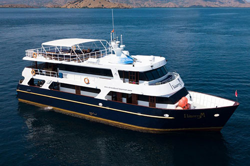 Memaid II Liveaboard diving trips in Indonesia