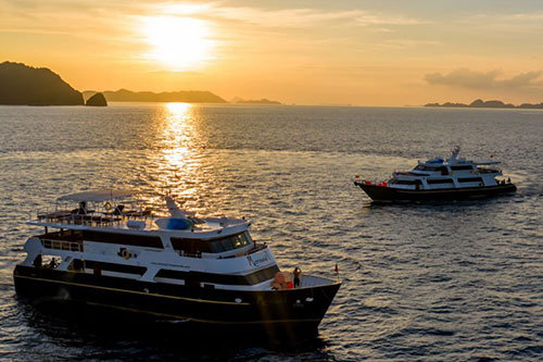Memaid Liveaboard diving trips in Indonesia