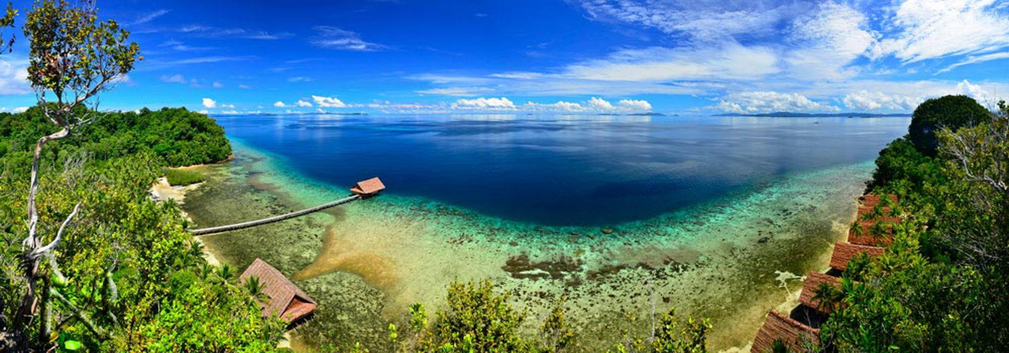Raja 4 divers resort - Dive resort raja ampat ...