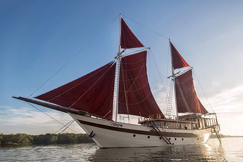 Charter on Tiare Luxury Phinisi Liveaboard