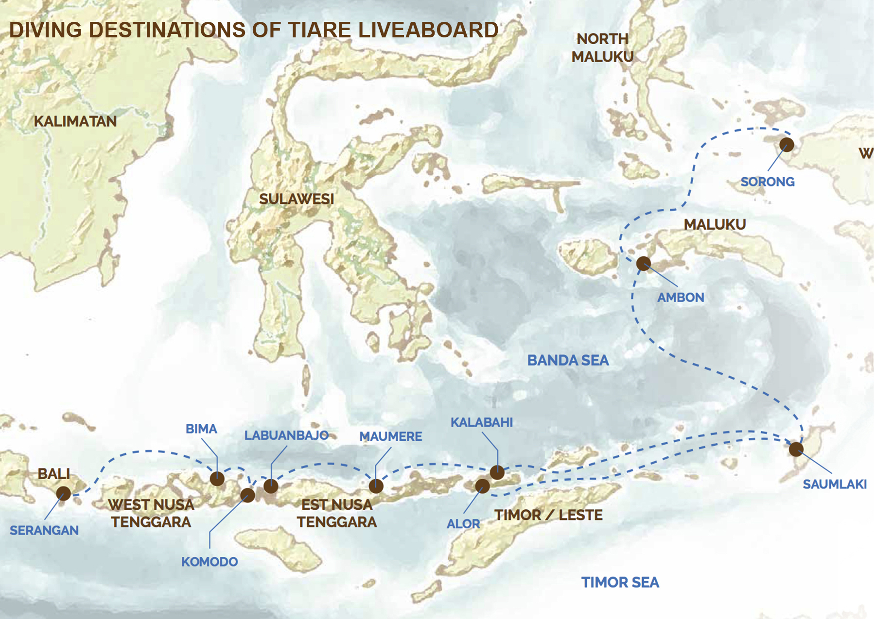 tiare_liveaboard_diving_destinations_indonesia