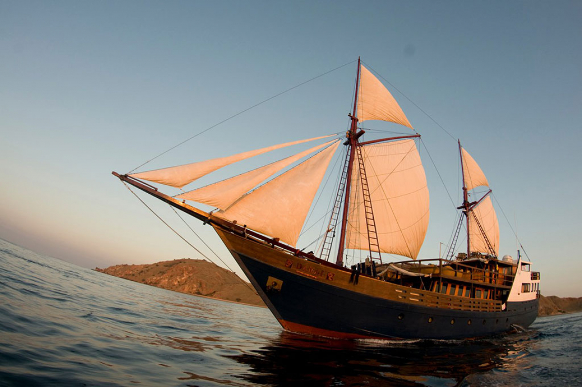 Cruising Indonesia as Dive Damai Fleet's agent, is committed to ensuring you a perfect diving holiday