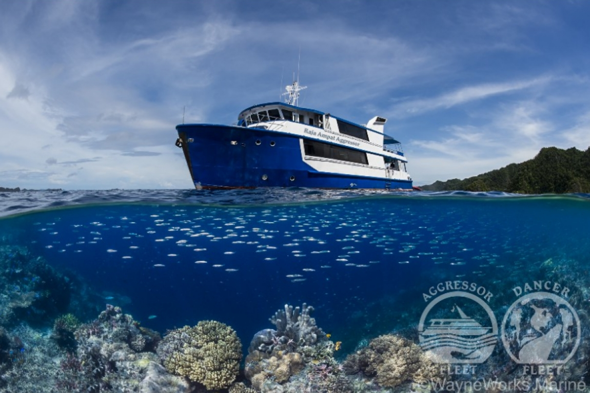 Raja Ampat Aggressor Dive Cruises in West Papua