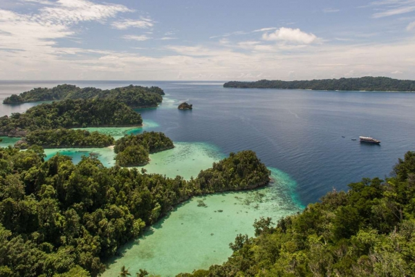 Full diving experience in Raja Ampat on the Ambai Liveaboard
