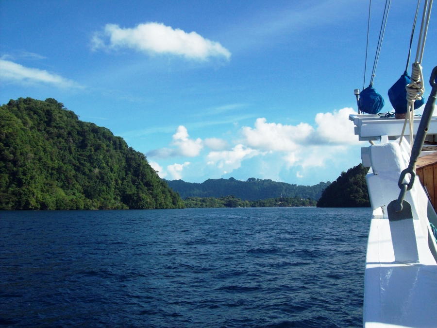 A liveaboad trip through Flores Sea and Banda Sea provide a wide range of dives sites of amazing geogical diversity