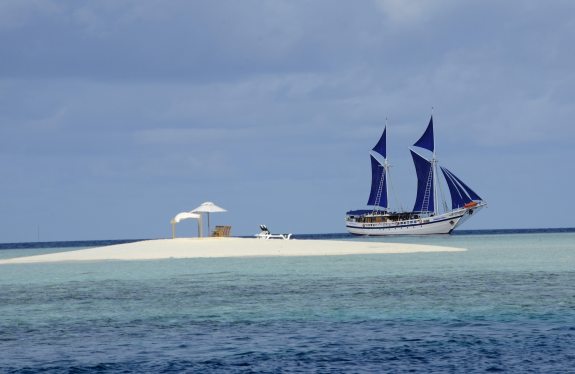 Cruising Indonesia as Siren Fleet's agent, is committed to ensuring you a perfect diving holiday